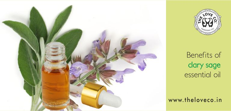 BENEFITS OF CLARY SAGE OIL - The Love Co